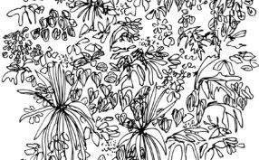 floralwallpattern